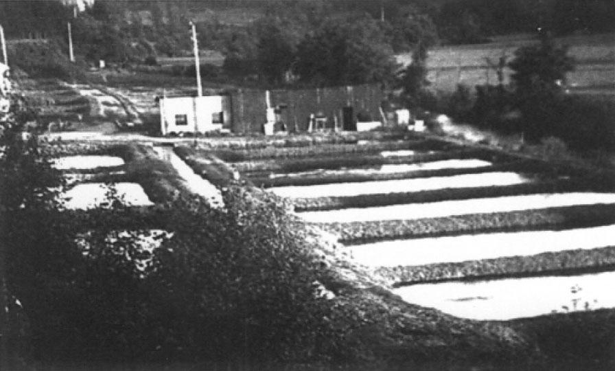 Pisciculteur_Mathonet_1940